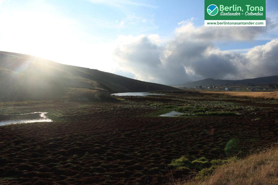Colchones de agua en la represa del corregimiento| Páramo Santurbán - Berlín, Tona - Santander Colombia